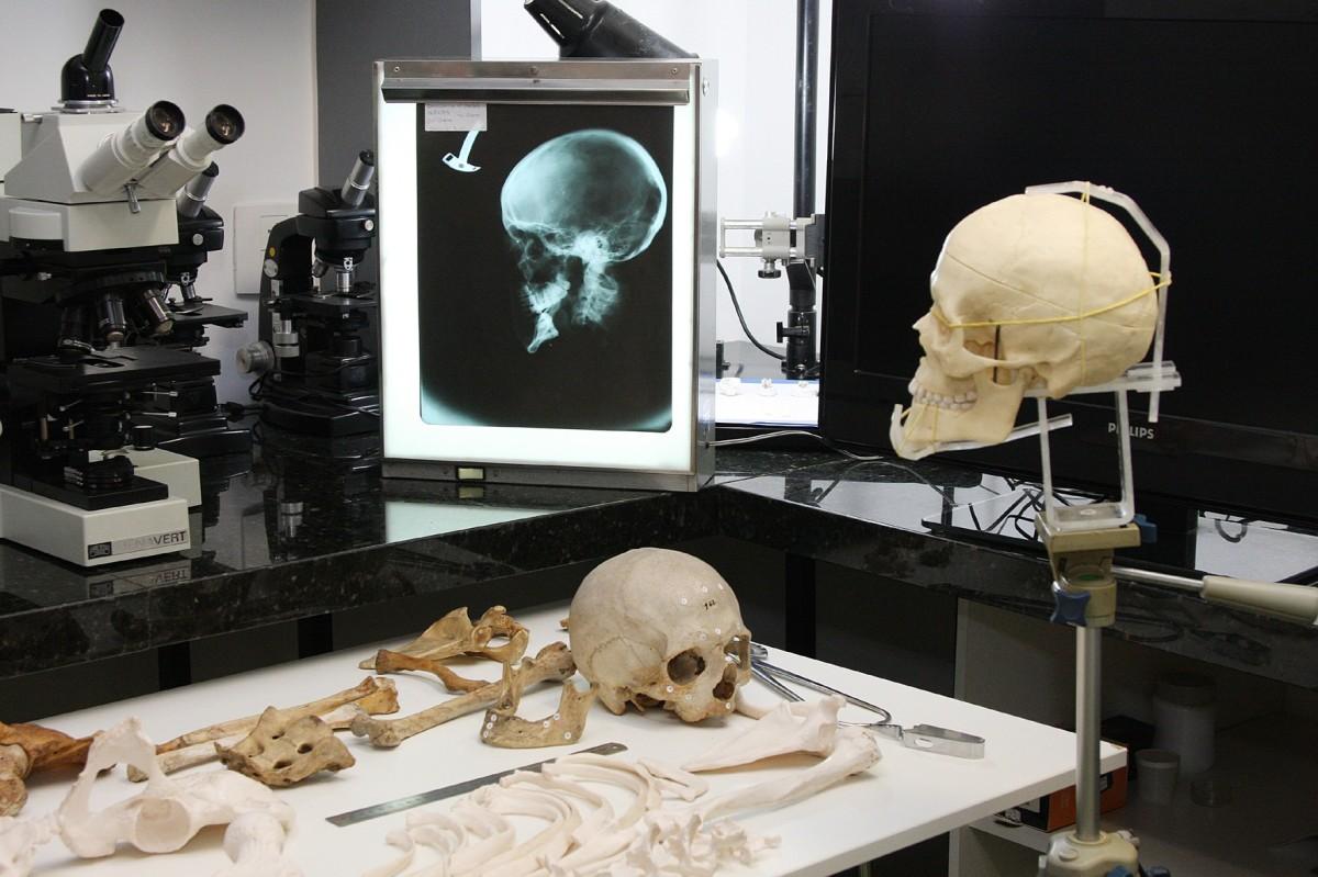Conoce más sobre la Maestría en Odontología Forense - Dra. Erika Alvarado Muñoz